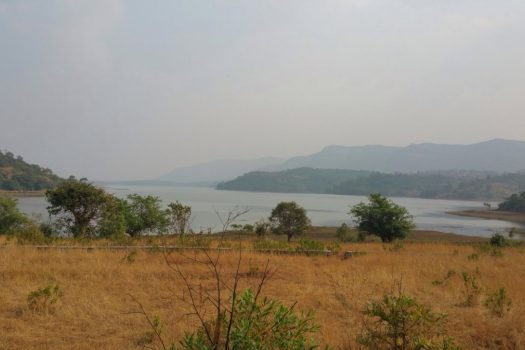 12 acre Dam touch agriculture land is for sale in Khandi,Takwe near Pune