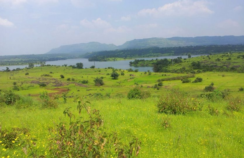 12 Acre Dam Touch Agriculture Land Is For Sale In Khandi