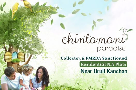 Chintamani Paradise | na plots in urlikanchan